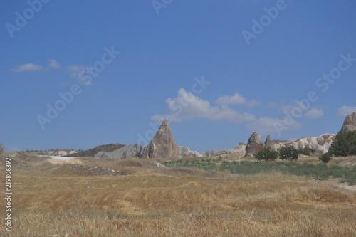 Garden Poster Cappadocia