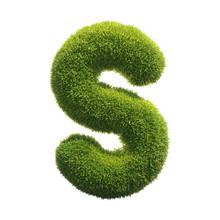 Grass Font 3d Rendering Letter S