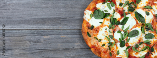 Freshly cooked homemade tomato and cheese pizza and to serve Canvas Print