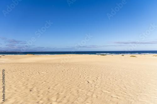 Poster Canarische Eilanden Desert Sand Dunes with a view to the Ocean in Fuerteventura, Canary Islands, Spain