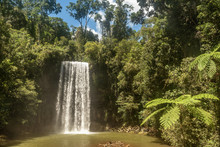 Milla Nilla Falls In Queenslan...