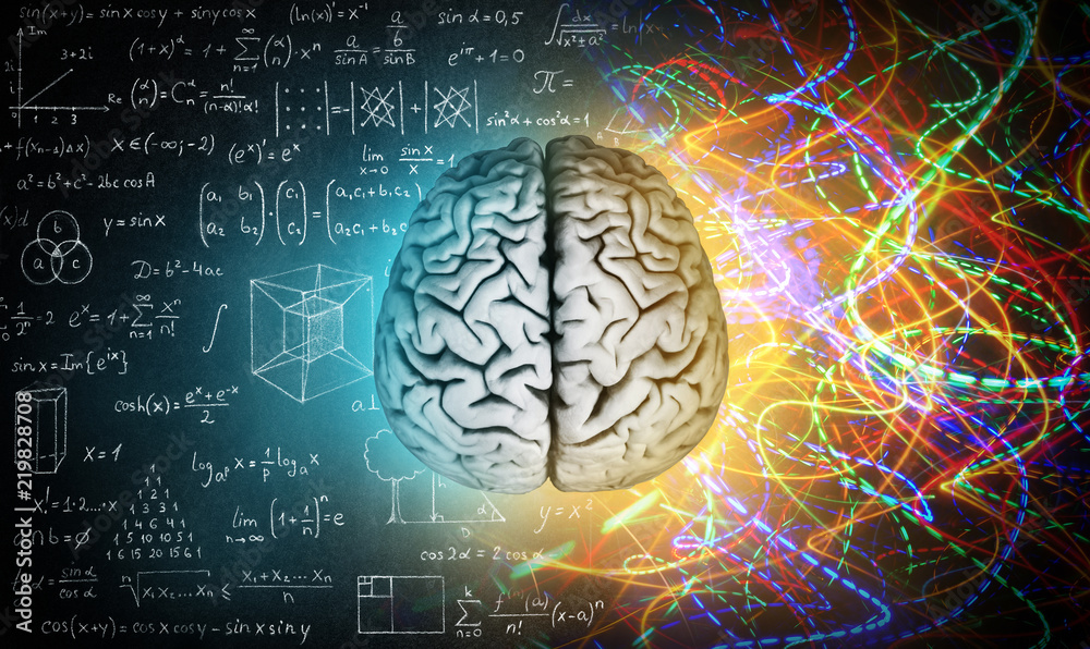 Fototapety, obrazy: The concept of the human brain. The right creative hemisphere versus the left logical hemisphere. Education, science and medical abstract background.