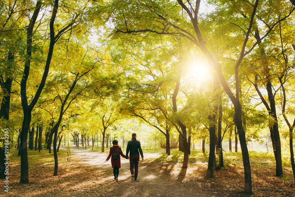 Fototapeta Back rear view of young couple in love woman with backpack, man in casual warm clothes walking by hands on road in autumn city park outdoors in sunny day. Love relationship family lifestyle concept.
