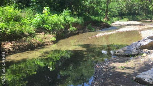 Cuba: beauty of tropical nature in the road leading to 'Topes de Collantes' (a n Slika na platnu