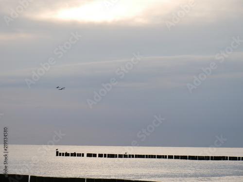 Ostsee mit Buhnen und Schwänen