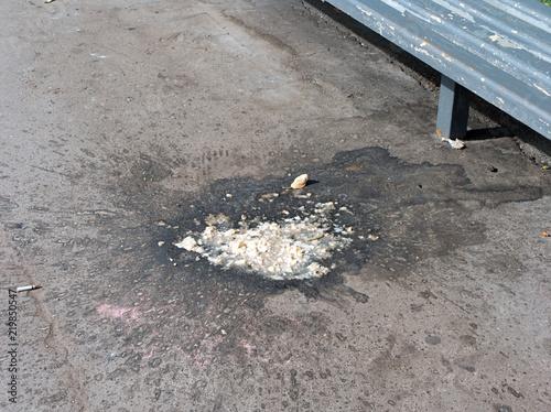 Fotografie, Obraz  vomiting on asphalt