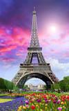 Fototapeta Wieża Eiffla -  Tour Eiffel on sunset