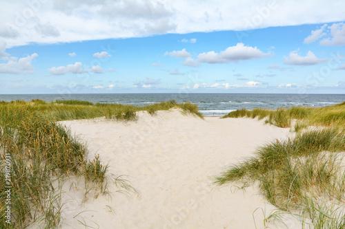Fotografie, Obraz View to beautiful landscape with beach and sand dunes near Henne Strand, Jutland