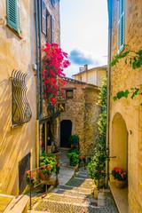Fototapeta Uliczki A narrow street in the old town of Saint Paul de Vence, France