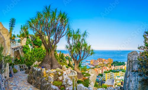 Obraz Jardin Exotique garden in Monaco - fototapety do salonu