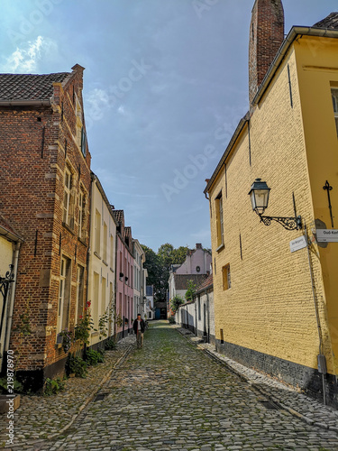 Old beguine houses in the Unesco protected beguinage in the city center of Lier, Wallpaper Mural