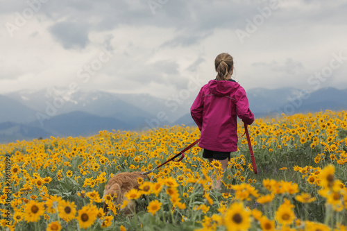 Spoed Foto op Canvas Weide, Moeras Young girl walking dog in a wildflower field
