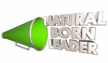 Natural Boarn Leader Great Boss Manager Bullhorn Megaphone 3d Illustration