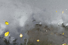 Wet Asphalt Pavement With Puddles, Raindrops And Autumn Leaves After Heavy Rain
