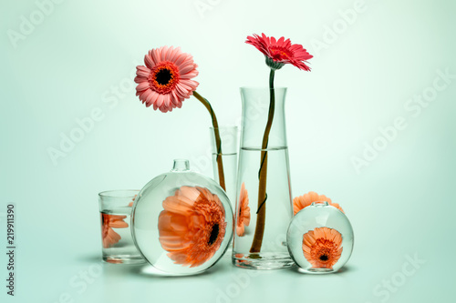 Fototapeta Still life with glass vases of various shapes and gerbera daisy flowers obraz