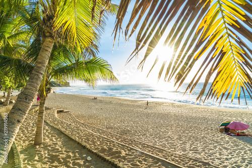 Poster Melon Boucan Canot Beach at Reunion Island, Africa