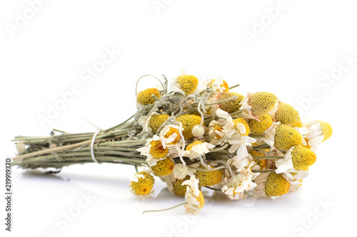 Photo  Dried flowers of medical daisies on a white background