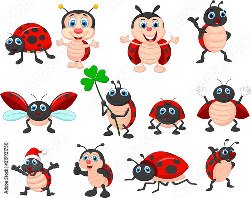 Obraz na plátne Cartoon ladybug collection set
