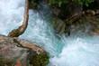 canvas print picture - Fluss, Baum, Wasser, Berg, Wandern, Bach