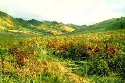 Photo  Beauty Landscape of Bromo