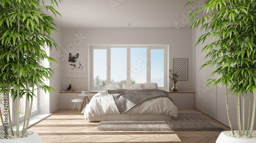 Zen interior with potted bamboo plant, natural interior design concept, modern white bedroom with big window, minimalist architecture