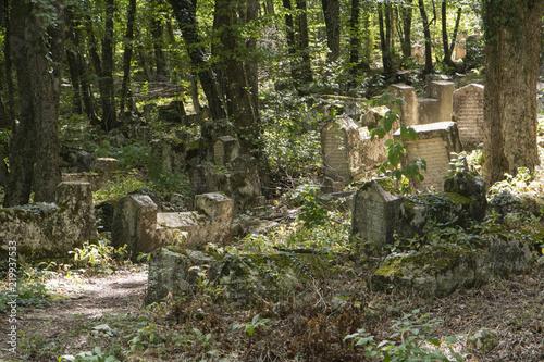 In de dag Begraafplaats cemetery