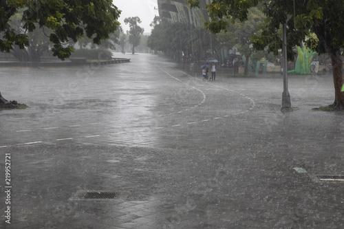 Fotomural 激しい雨