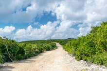 Countryside Landscape In The Bahamas. Concept. Road Less Traveled.