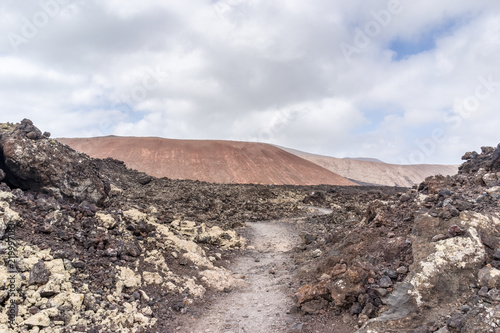 Poster Zalm Landscape of volcanic desert of Lanzarote, Spain