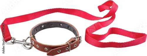 Dog Collar And Leash - Isolated Wallpaper Mural
