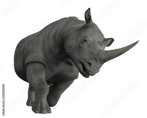 Obraz na plátně rhinoceros exploring arround