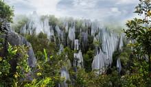 Pinnacles In Mulu National Par...
