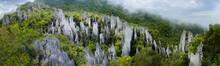 Pinnacles In Mulu National Parc In Malaysia