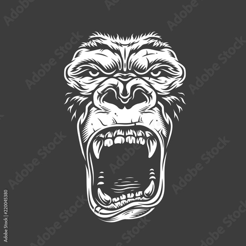 Obraz na płótnie Face of gorilla isolated on white