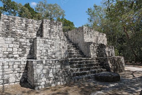 Foto op Canvas Rudnes The ruins of the ancient Mayan city of calakmul, campeche, Mexico