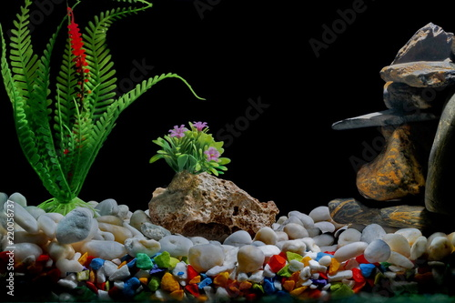 Fish Tank Decorations With Gravel And Trees On A Black