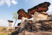 Mushroom Rock. Fantasy Shape O...
