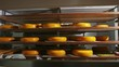 Several shelves with beautiful heads of Dutch cheese