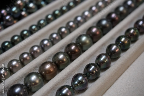 black pearls of french polynesia