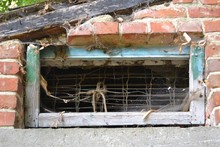 Closeup Photograph Of A Tiny, Grungy, And Rectangular Window In A Brick Wall, Just Under The Roof Of A Shed. The Window Is Partially Covered In Cobwebs.