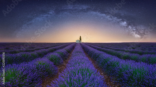 France, Alpes-de-Haute-Provence, Valensole, lavender field under milky way