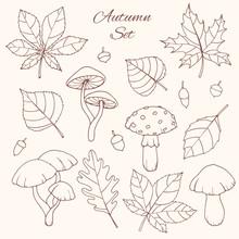 Hand Drawn Vector Autumn Set W...