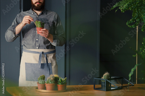 Fotografia  Man with gardening hobby exaggerating cacti in grey interior