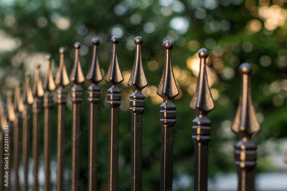 Fototapeta ozdobne ogrodzenie metalowe