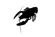 Cancer Silhouette Of Crayfish, Crayfish Icon, Lobster Sign, Crayfish Symbol Black And White. Vector Illustration.