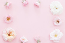 Beautiful Pink Roses Heads On Pink Background
