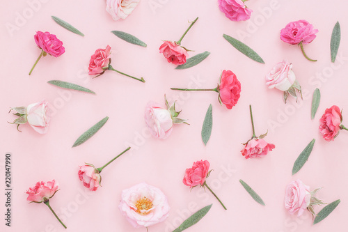 Foto op Canvas Bloemen Beautiful pink roses heads on pink background