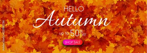Fototapeta Hello autumn 50% sale. Promo banner with golden leaves. obraz