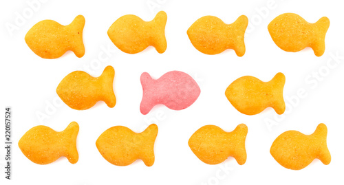 FIsh Shaped Cheese Crackers on a White Background Canvas Print