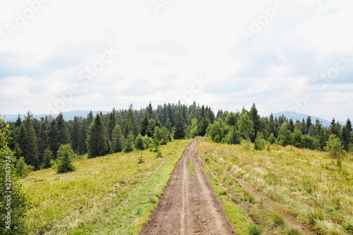 Fotobehang Wit Picturesque landscape with pathway in mountain forest
